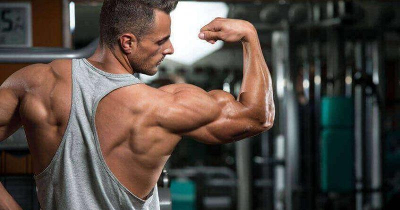 Как долго тренироваться для максимального увеличения мышц?